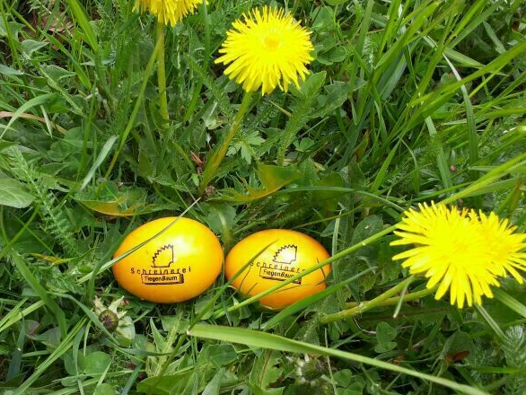 """Gelbe Ostereier mit einer schwarzen Aufschrift """"Schreinerei Fiegenbaum"""" liegen in einer Wiese."""